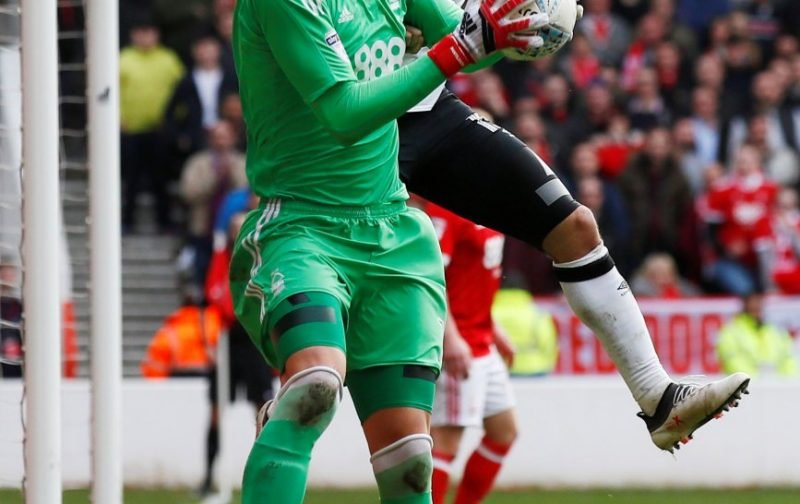 Forest fans lay in to Pantilimon v Norwich