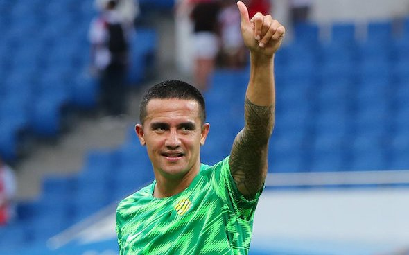 Image for Everton: Tim Cahill critical of the Toffees' current position