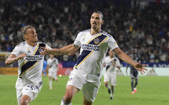 Image for Everton: Supporters delighted with link to Zlatan Ibrahimovic