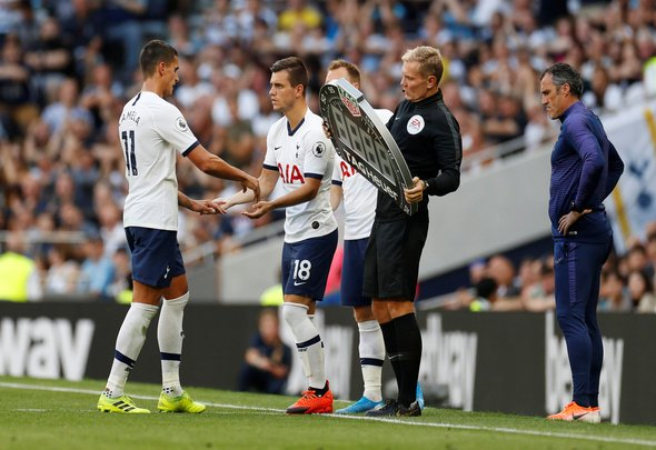 Many Tottenham fans were delighted with £45m-rated man's cameo