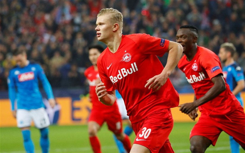 Image for Man City: Supporters want club to sign Erling Haaland