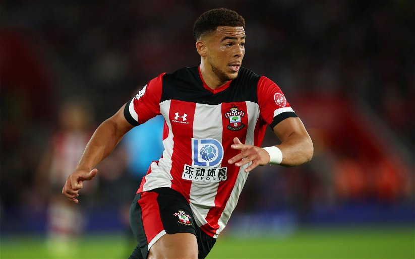 Image for Southampton: Mark Halsey discusses Che Adams' offside decision against AFC Bournemouth
