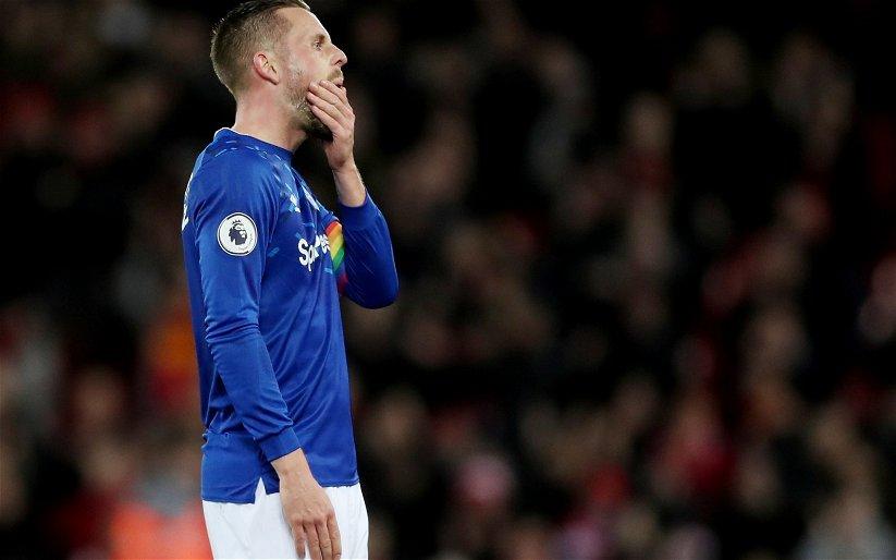 Image for Everton: Marcus Bent on Gylfi Sigurdsson's future