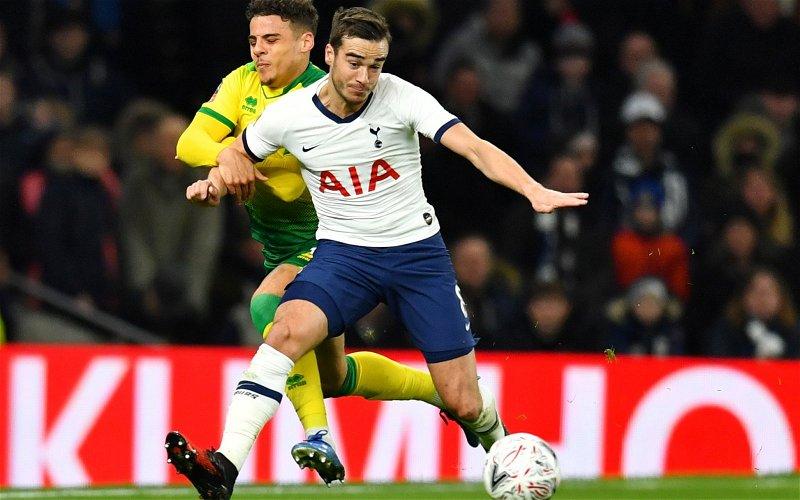 Image for Tottenham Hotspur: Fans flock to Harry Winks transfer claim