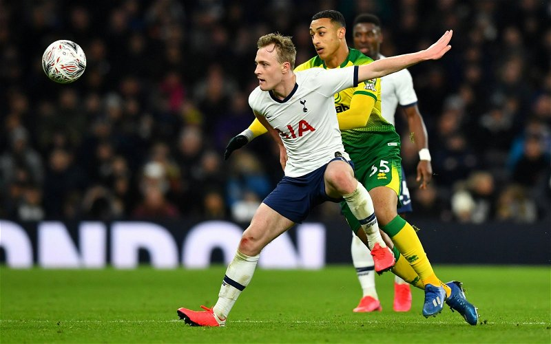 Image for Tottenham Hotspur: Fans excited as Oliver Skipp claim emerges