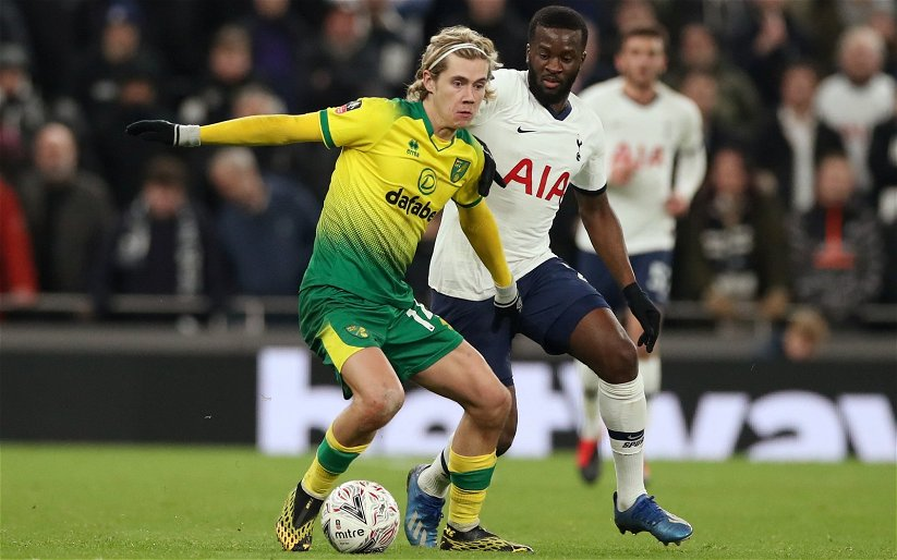 Image for Tottenham Hotspur: Alasdair Gold hints at Todd Cantwell interest