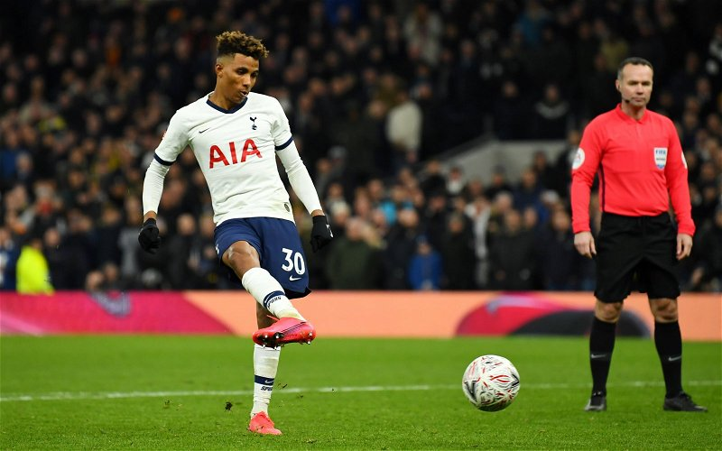 Image for Tottenham Hotspur: Spurs fans discuss Fernandes footage