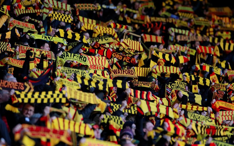Image for Watford: Kieran Maguire discusses financial aspect of club's managerial changes
