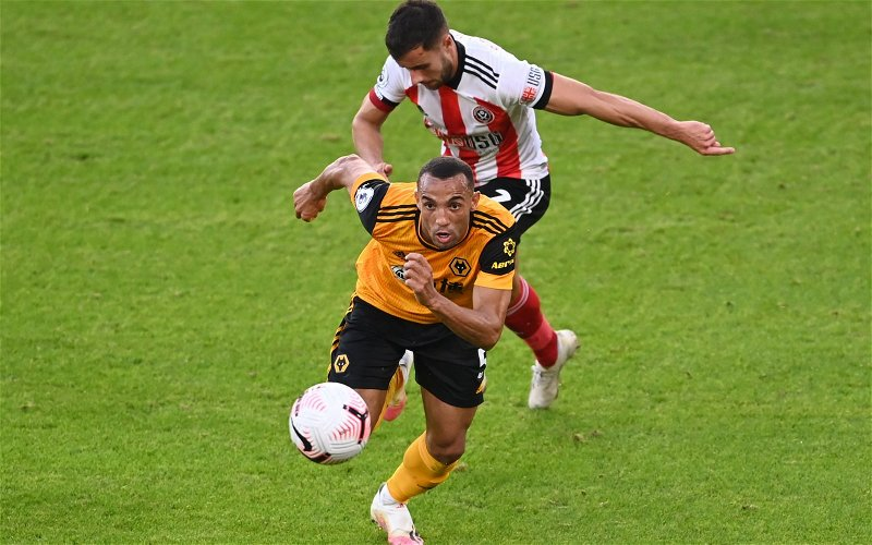 Image for Wolves: Tim Spiers delivers worrying claim on Marcal