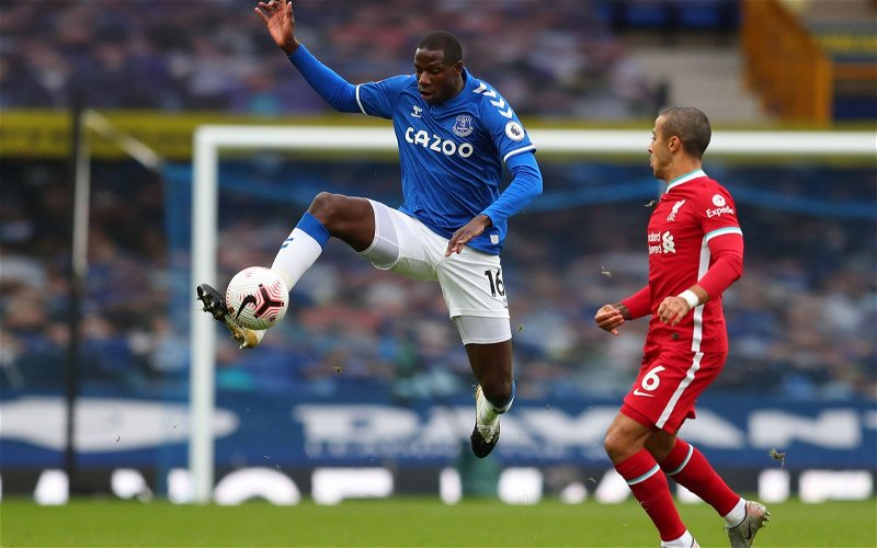 Image for Everton: Podcaster raves over on Abdoulaye Doucoure