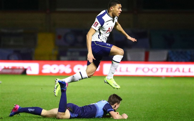 Image for Tottenham Hotspur: Fans react to Harry Redknapp's comments on Carlos Vinicius