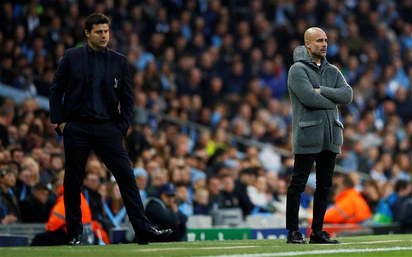 Image for Manchester City: Steve Howey earmarks Mauricio Pochettino for City job