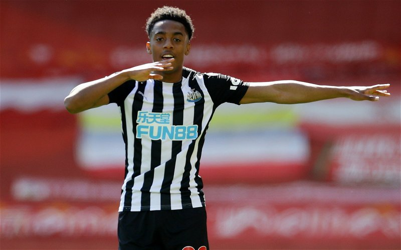 Image for Newcastle United: Many fans delighted with Craig Hope's Joe Willock update