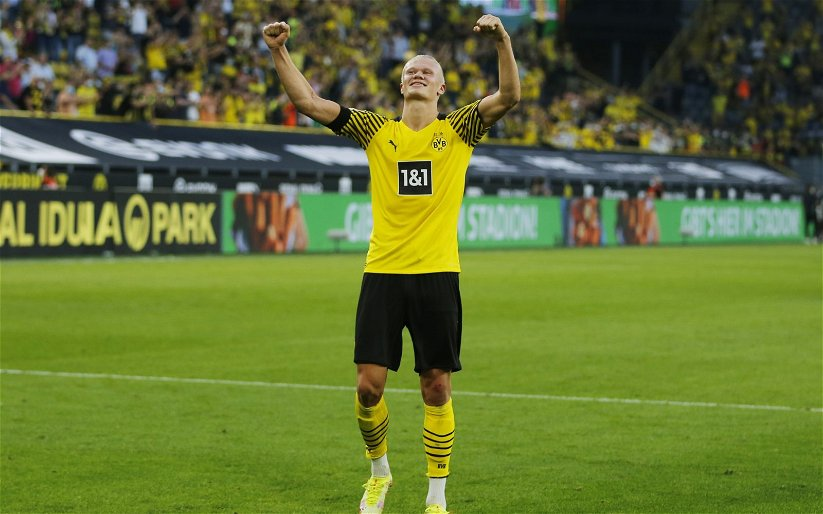 Image for Sky Sports reporter predicts Manchester United to sign Erling Haaland next summer