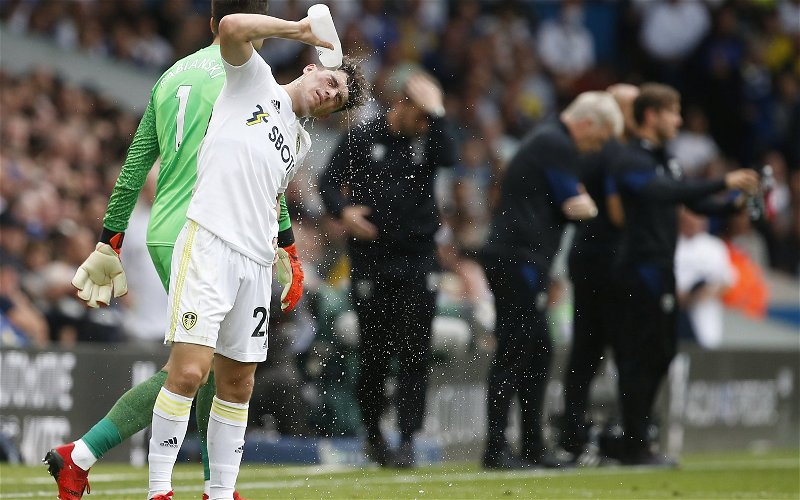 Image for Leeds United: International fans slam Dan James' performance