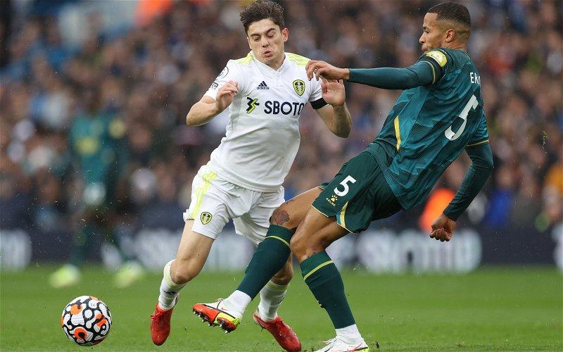 Image for Leeds United: Fans slam Dan James' performance for Wales