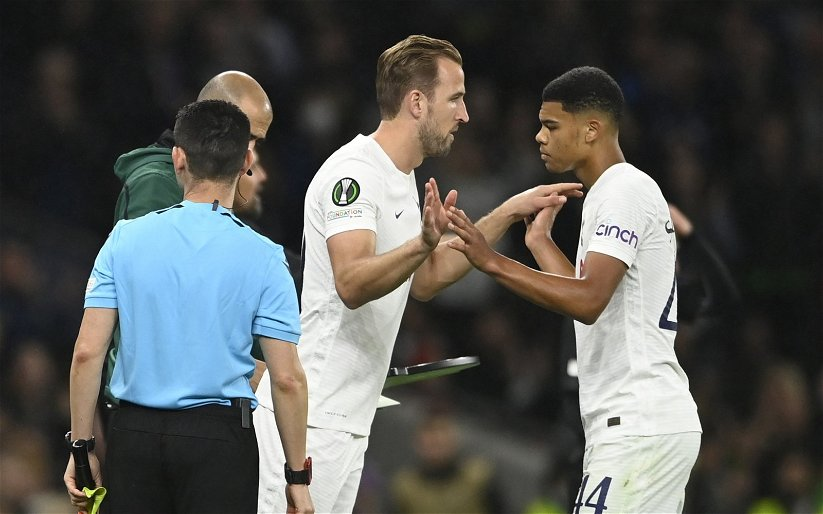 Image for Tottenham Hotspur: Fans react to Dane Scarlett's England U19 performance