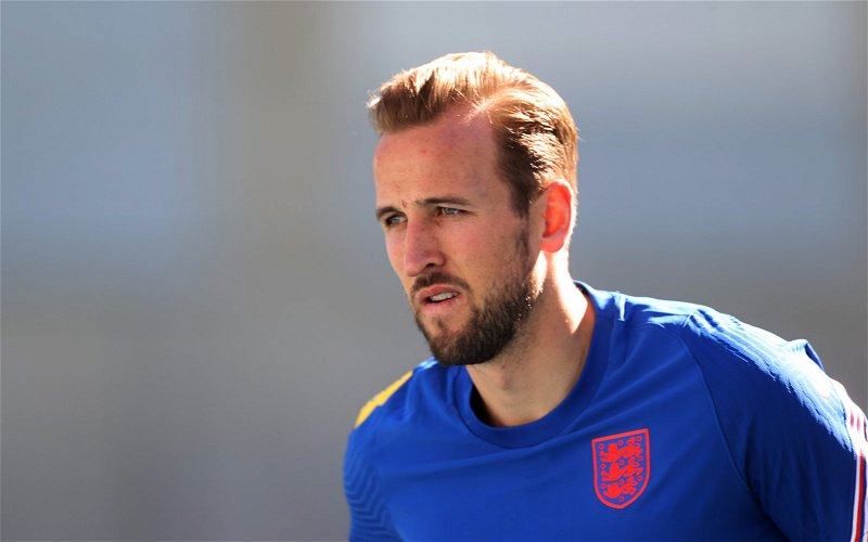 Image for Tottenham Hotspur: International fans left furious with Kane display